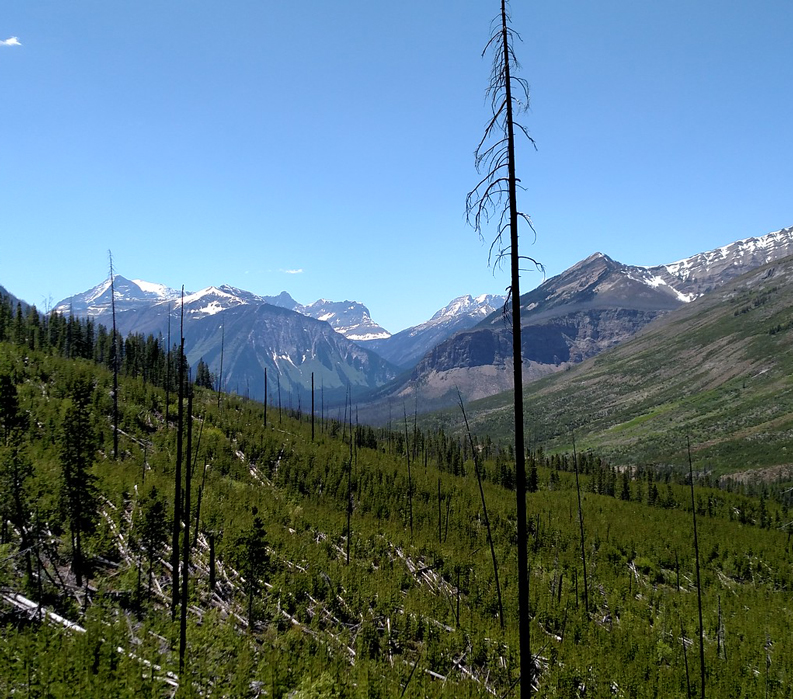 Walk the Canadian Rockies: Banff & Yoho National Parks - scenery