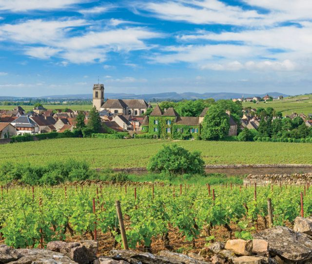 Wine Village visited on Burgundy Bike Tour