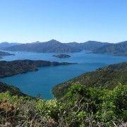 New Zealand Walking