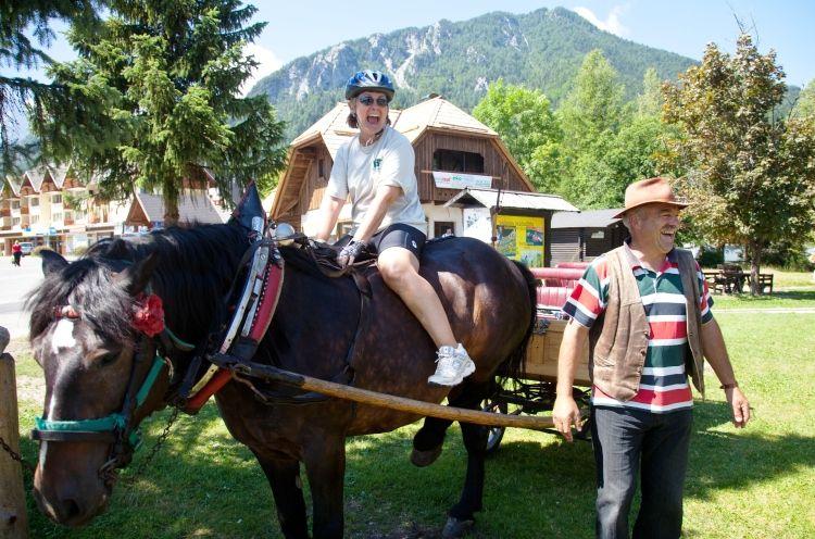 Slovenia horse