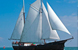 All About Barge and Sail