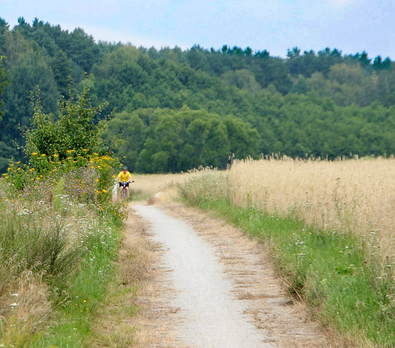 Bike trails on German bike tour