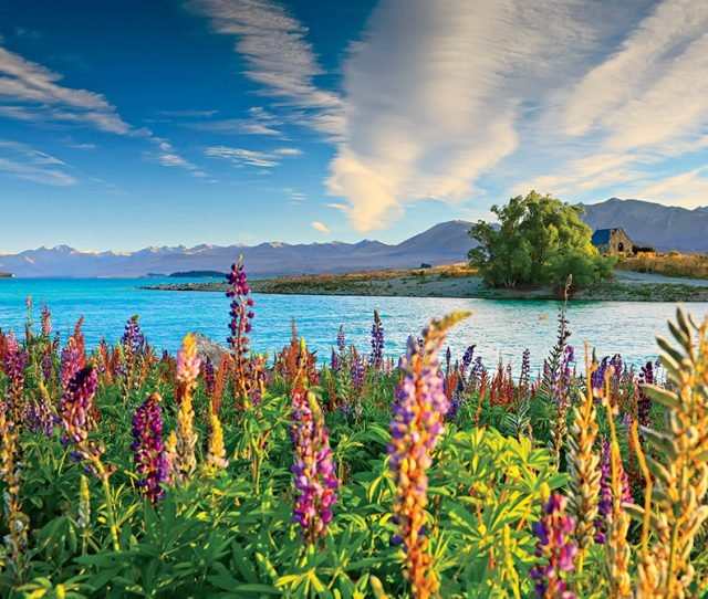 new zealand is gorgeous