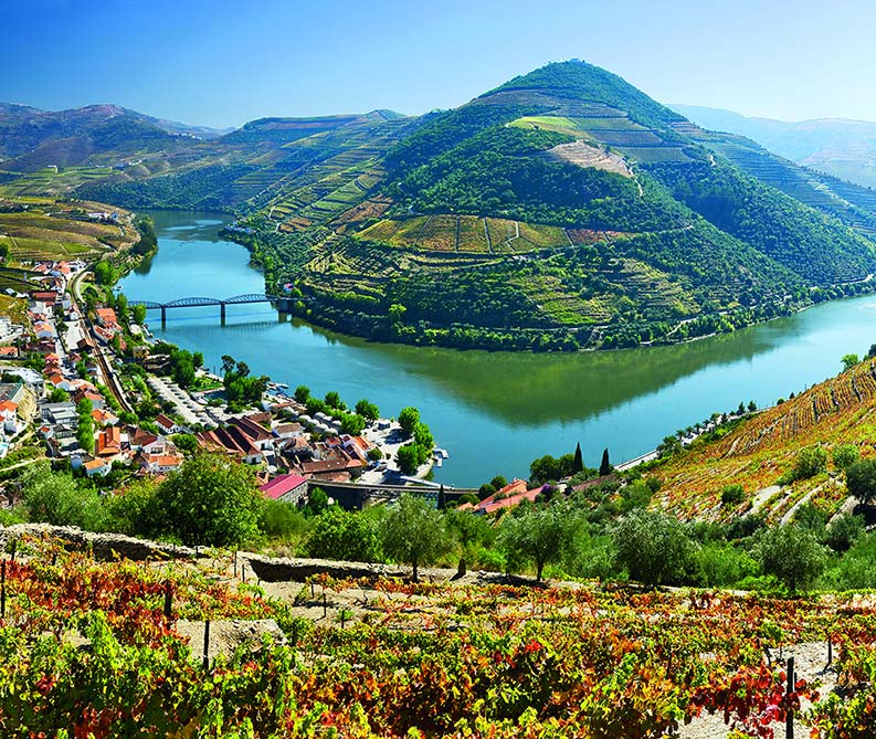 Portugal Walking Tour with VBT | Douro River Valley