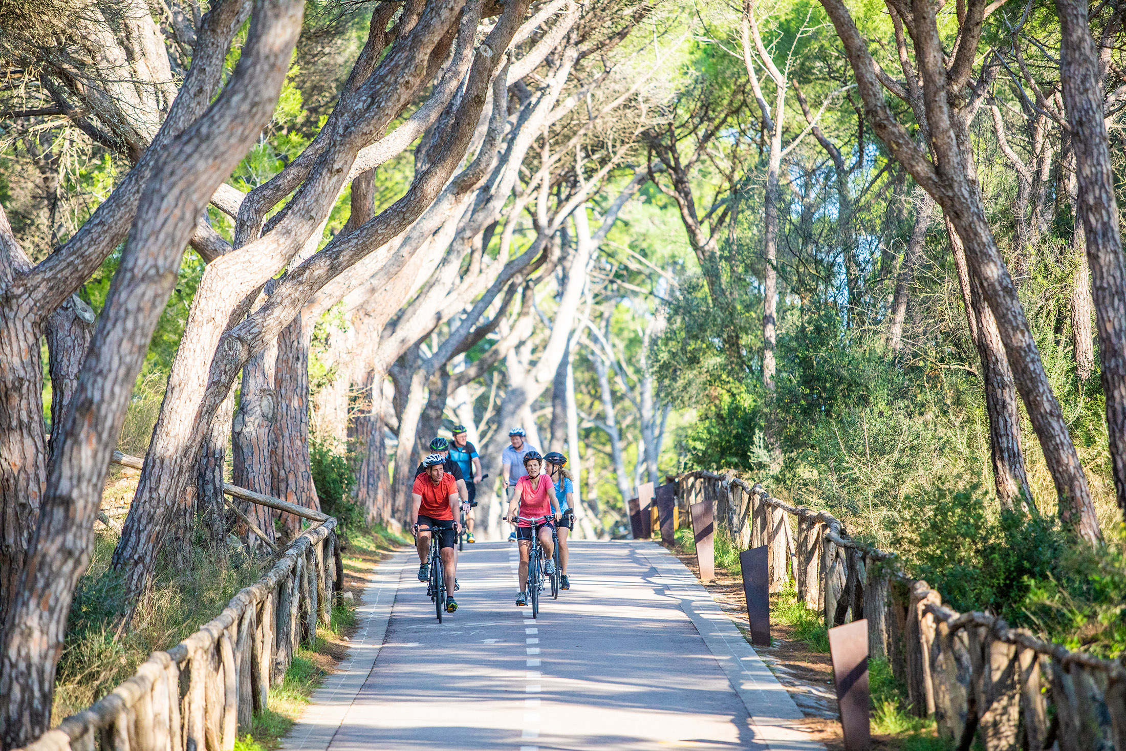 Self-Guided Bicycling Vacations 3