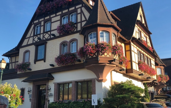 Alsace & the Black Forest: La Route Des Vins