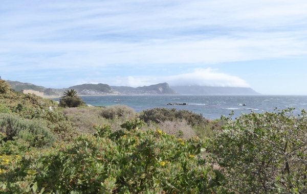 South Africa: Cape Town & the Garden Route