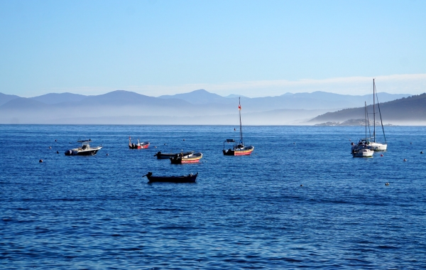 Chile's Coastal Vistas and Vineyards